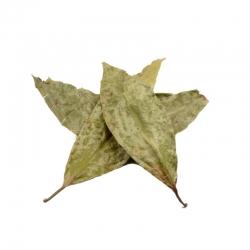 Chaliponga Diplopterys Cabrerana - Chaliponga - Blätter 12,85 Next Level Smartshop Webshop