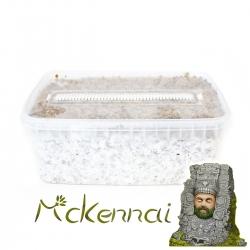 Paddo Grow Kits Cubensis McKennaii - Magic Mushroom Grow kit € 27,95 Next Level Smartshop Webshop
