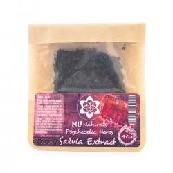 Salvia NLNaturals - Salvia 40X 16,00 Nächste Stufe Smartshop Webshop